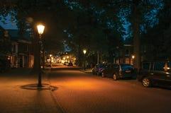 La vista di notte di ampia via alberata e la lampada inviano la luce nella priorità alta all'alba in Weesp Immagine Stock