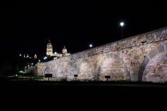 La vista di notte della cattedrale di Salamanca con il ponte romano ha acceso la priorità alta, Salamanca, Spagna Fotografie Stock Libere da Diritti