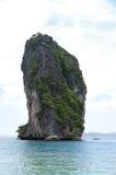 La vista di orizzonte di grande alta scogliera della roccia ha riempito di vegetazione verde fotografia stock