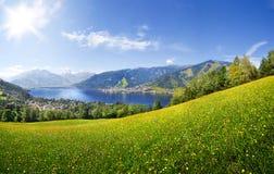 La vista di panorama sopra Zell vede, l'Austria Fotografia Stock