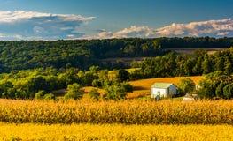 La vista di Rolling Hills si avvicina alle strade trasversali, Pensilvania fotografia stock libera da diritti