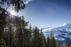 La vista francese soleggiata della neve della montagna delle alpi nei les si arca la Francia Fotografia Stock