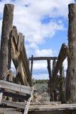 La vista nel vecchio bestiame fa scendere nel deserto Fotografie Stock
