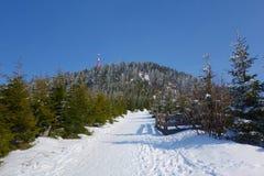 La vista nevosa dell'inverno sull'più alta montagna ha chiamato Lysa Hora, Beskydy, repubblica Ceca Fotografie Stock Libere da Diritti