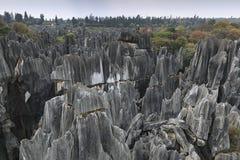 La vista panoramica della foresta di pietra a provincia di Kunming, il Yunnan, Cina inoltre sa come Shilin fotografia stock