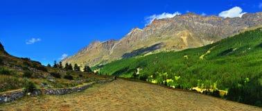 La vista panoramica sopra alpien le montagne con il hayfield Immagine Stock