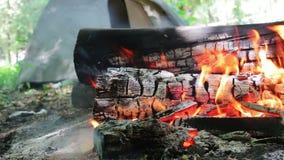 La vista piacevole di fuoco bruciante con le scintille e le fiamme rosse si chiudono sulla vista Legno Burning nel camino video d archivio