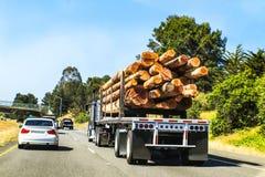 La vista posterior de registrar semi el camión cargó con los registros grandes que viajaban en la carretera con otros vehículos Imágenes de archivo libres de regalías