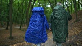 La vista posterior de un amor envejeció los pares que seguían su ruta en la madera almacen de metraje de vídeo