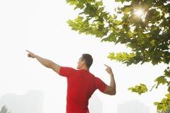 La vista posterior del hombre muscular joven que estira por un árbol, arma aumentado y los fingeres que señalan hacia el cielo en  Imágenes de archivo libres de regalías