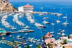 La vista sopraelevata della baia del porto di Avalon con il casinò, il pilastro di piacere, le barche a vela e gli yacht sull'iso Fotografia Stock Libera da Diritti