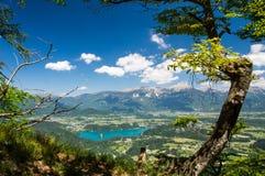 La vista splendida sopra il lago ha sanguinato ed alpi il giorno di estate Fotografie Stock Libere da Diritti