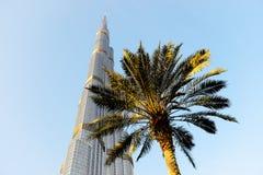 La vista su Burj Khalifa e sulla palma Fotografia Stock Libera da Diritti