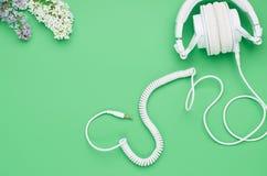 La vista superior de la tabla de un ni?o adolescente, auriculares de la composici?n florece en fondo verde claro foto de archivo libre de regalías
