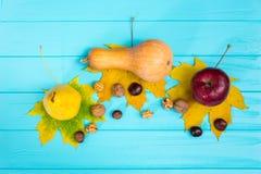 La vista superior de una manzana, una pera y la calabaza que mienten en las hojas acercan a wa Fotografía de archivo libre de regalías