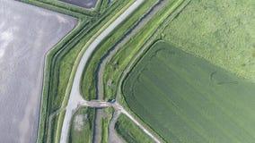 La vista superior del campo de trigo y del campo arado debajo del higo Tiroteo de un abejón Fotografía de archivo libre de regalías