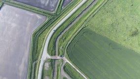 La vista superior del campo de trigo y del campo arado debajo del higo Tiroteo de un abejón Imagenes de archivo