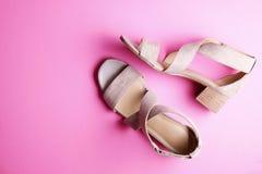 La vista superior del medio femenino de moda se inclinó los zapatos de cuero del ` s de las mujeres de colores en colores pastel  Imagen de archivo libre de regalías