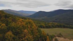 La vista superiore aerea di andata più nella foresta variopinta di autunno cade legno rosso arancio, verde, giallo dell'albero stock footage