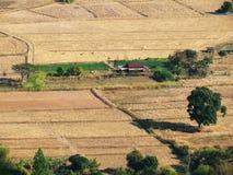 La vista superiore del paesaggio del villaggio, raccolto del villaggio sistema in Tailandia Fotografie Stock Libere da Diritti