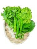 La vista superiore di lattuga, di basilico con i capelli bianchi, di peperone verde con le fette e di aglio incide le fette immagine stock