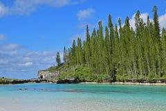 La vista típica de la piscina natural con los árboles de pino verdes ascendentes en el fondo y la turquesa riegan Fotos de archivo libres de regalías