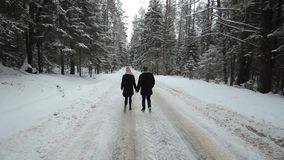 La vista trasera de pares jovenes y hermosos está caminando en el hombre y la mujer de Milennials del bosque del invierno que se  almacen de metraje de vídeo