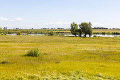 La Vistule près de Tczew, Pologne Images stock