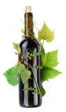 La vite circonda una bottiglia di vino Immagini Stock
