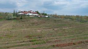 La vite ha coltivato l'area vicino a Ploiesti, Romania, metraggio aereo video d archivio