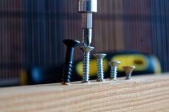La vite sparsa ha avvitato con il cacciavite nella plancia di legno Fotografia Stock