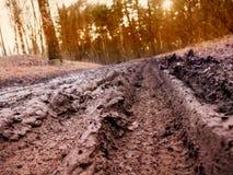 La voie dans la boue sur le chemin de terre de village Photos stock