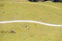 La voie de marche de enroulement blanche divise le champ d'inclinaison dans deux parts images libres de droits
