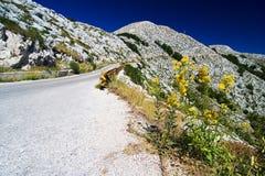La voie de montagne dans Bikovo Photographie stock libre de droits