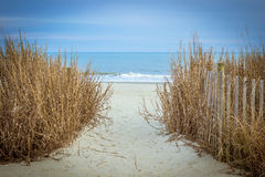 La voie à la plage Photo stock