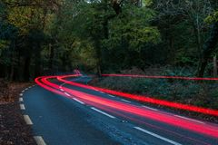 La voiture arrière allume le bourdonnement par un chemin forestier Photographie stock