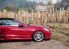 La voiture de sport rouge a garé à côté de la forêt de banane Images stock