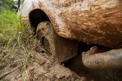 la voiture de 4x4 WD roule dedans la boue dans la forêt Images stock