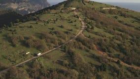 La voiture descend la colline sur une route serpentine passant parmi des arbres et des buissons banque de vidéos