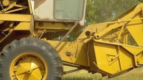 La voiture jaune récolte la culture de blé sur des champs Jour ensoleillé Agriculture La moissonneuse de cartel recueille la cult banque de vidéos