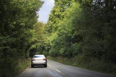 La voiture va sur la route dans le tunnel des arbres Images stock