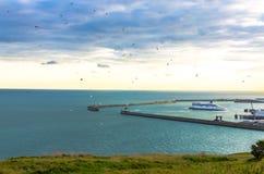 La volée des oiseaux comme ferry arrive au port de Douvres Photographie stock