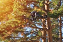 La volata parla monotonamente lo sfondo naturale fotografia stock libera da diritti