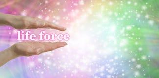 La vostra forza vitale è in vostre mani Fotografia Stock Libera da Diritti