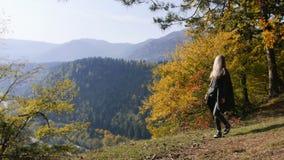 La voyageuse de femme marche par les montagnes et les forêts clips vidéos