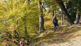 La voyageuse de femme marche par les montagnes et les forêts banque de vidéos