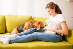 La vraie amitié entre les animaux Image libre de droits