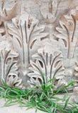 La vraie et en pierre herbe d'Ephesus, Turquie Image libre de droits