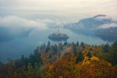 La vue étonnante du lac a saigné au matin brumeux d'automne Photo stock