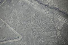 La vue aérienne de Nazca raye - le geoglyph d'araignée, Pérou Images stock